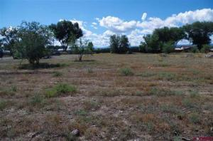 Lot 1 Orchard 2 Orchard Road Montrose CO 81403