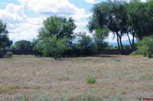Lot 2 Orchard 2 Orchard Road Montrose CO 81403