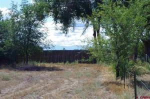 Lot 3 Orchard 2 Orchard Road Montrose CO 81403