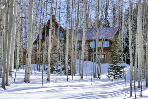 858 Wapiti Road Telluride CO 81435