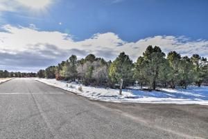 TBD Ponderosa Drive Ridgway CO 81432