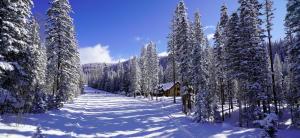 538 Benchmark Mountain Village CO 81435