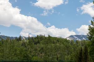 TBD Knoll Estates Drive Mountain Village CO 81435