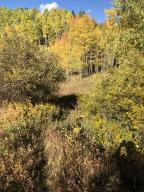 TBD Aspen Park Circle Telluride CO 81435