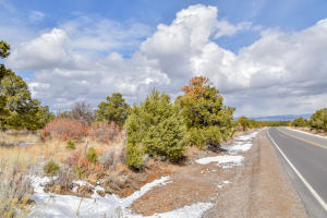 24249 Dave Wood Road Montrose CO 81403