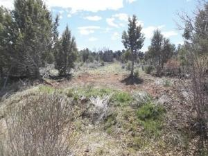 230 Reservoir Way Norwood CO 81423