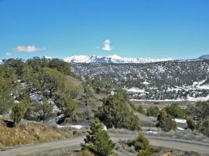 94 Pleasant Valley Drive Ridgway CO 81432