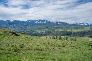 82 MIguel Road Telluride CO 81435