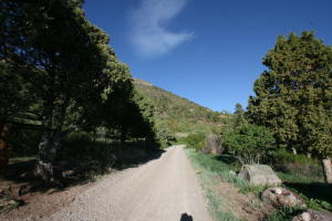 751 Co Rd 14A Ouray CO 81427