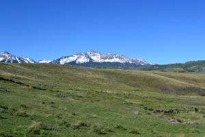 TBD Last Dollar Road Telluride CO 81435