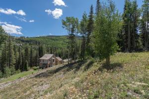 115 Cortina Drive Mountain Village CO 81435