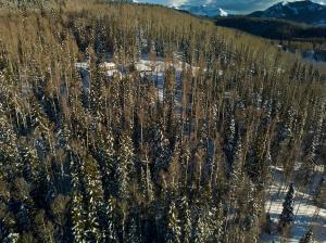 18 Elk Run Telluride CO 81435