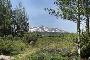 111 Adams Way Mountain Village CO 81435