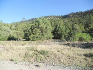 TBD Old Relay Road Ridgway CO 81432