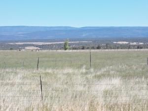 tbd Highway 145 Redvale CO 81431