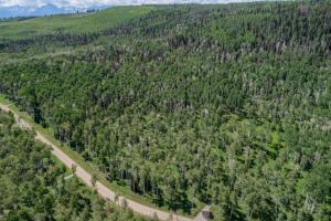 4C Spruce Mountain Lane Ridgway CO 81432