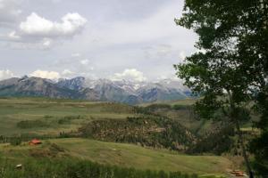 451 Elk Wallow Road, Placerville, CO 81430