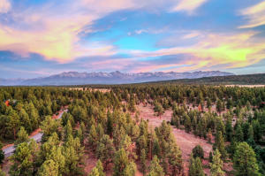 25 Canyon Point Drive Ridgway CO 81432