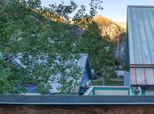 471 W Pacific Avenue Telluride CO 81435