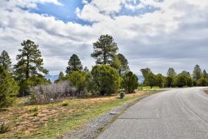 1761 Marmot Drive Ridgway CO 81432