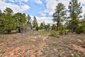 TBD - 556 N Badger Trail Ridgway CO 81432