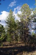 Lot 6 Big Canyon Point Ridgway CO 81432