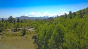 1309 Aspen Drive Ridgway CO 81432