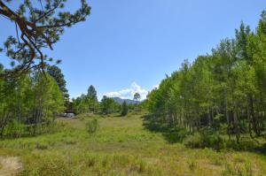 1269 Aspen Drive Ridgway CO 81432