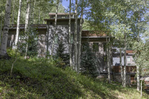 461 S Pine Street Telluride CO 81435