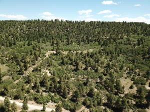 TBD Grean Meadows Ln. Lot 126 Placerville CO 81430
