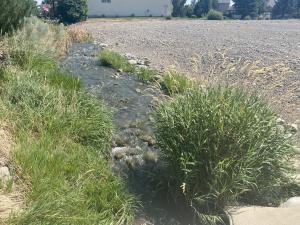 570 Cobble Drive Montrose CO 81401
