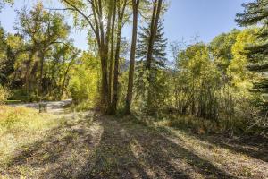 5 River Trail Rd. Placerville CO 81430