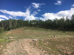 Private Rd Elk Run Telluride CO 81435