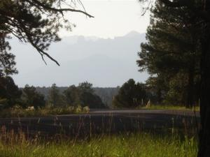 211 S Badger Trail Ridgway CO 81432