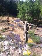 256 Moondance Trail Norwood CO 81423