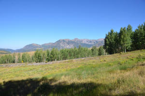 Lot 50 Sunset Circle Telluride CO 81435