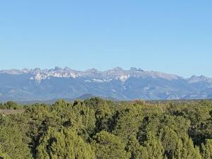60500 V60 Trail Montrose CO 81403