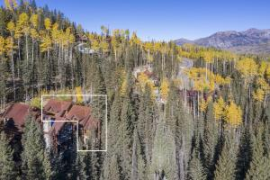 107 Cabins Lane Mountain Village CO 81435