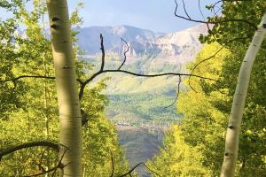 TBD Wapiti Road, Telluride, CO 81435