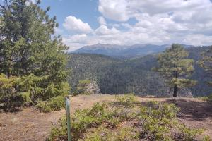 TBD High Bluff Drive Placerville CO 81430