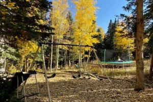 27 Spruce Way Telluride CO 81435