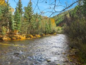 TBD River Trail, Placerville, CO 81430