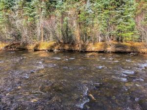 TBD River Trail Placerville CO 81430
