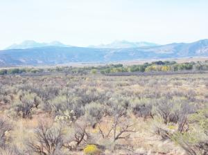 tbd Highway 141 Redvale CO 81431