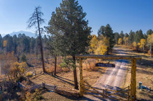 Lot 14 Eagles Nest Road Placerville CO 81430