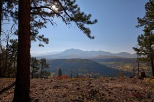 Lot 6 Sage Grouse Road Placerville CO 81430