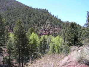 tbd Highway 145,Fall Creek Placerville CO 81430