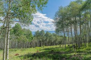 6A Spruce Mountain Lane Ridgway CO 81432