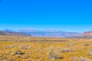 TBD Highway 90 Naturita CO 81422