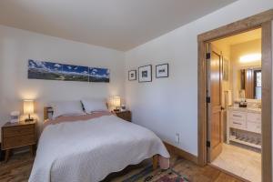 250 S Pine Street Telluride CO 81435